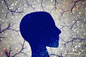 human neurons